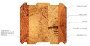 Выбор дерева для строительства дома