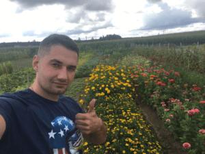 Качественные недорогие семена